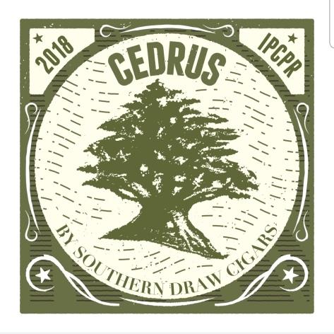 Cedrus1